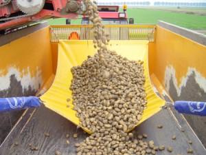 Stopshock-potato-union-fallbreaker-loading-sequence-6