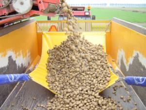 Stopshock-potato-union-fallbreaker-loading-sequence-7